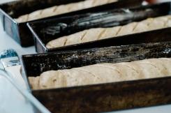 Squash Bread-5